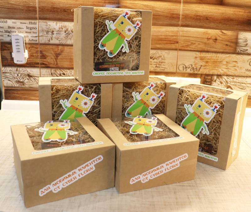 Коробки с печеньем от Cyber Flora®