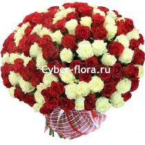 Цветы доставка цветов по ст. тбилисской продажа цветов георгин